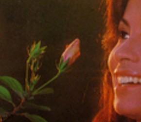 Roberio de Ogum previu a morte de Clara Nunes, considerada uma das grandes intérpretes da música brasileira. Veja: