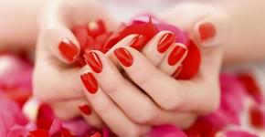 100-petalas-rosa-vermelha-artificiais-seda-reutilizaveis_MLB-F-2843660174_062012